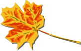 Fall leaf via openclipart.org