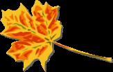 Fall leaf via openclipart.org