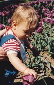My son touching tulips