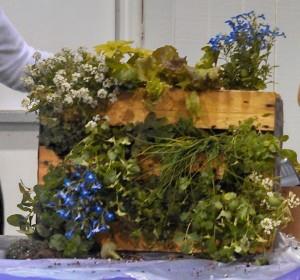 2013 Carolina Yard Gardening School ~ Pallet Herb Garden