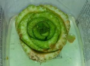 Celery cutting