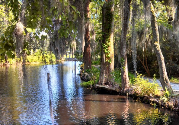 Opposing view from white bridge at Magnolia Plantation