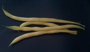 Yellow/wax bean pods
