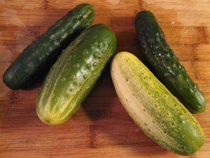Green cucumbers (on ends) and pickling cucumbers (middle)