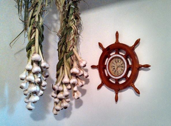 Garlic curing in my kitchen