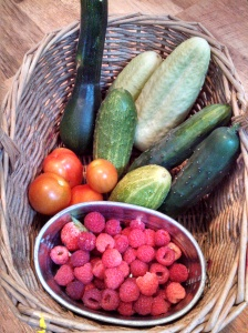 Sunday's harvest ~ zucchini, cucumbers, tomatoes, raspberries
