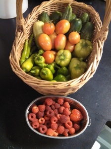 Monday's harvest ~ cucumbers, tomatoes, pepperoncini, raspberries