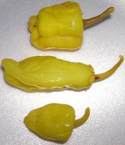 Pickled pepperoncini ~ photo credit: http://public-domain-images.blogspot.com