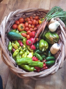 Harvest July 21