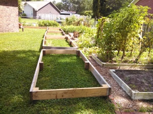 All the raised beds assembled