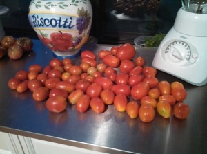 Ripe tomatoes in my kitchen