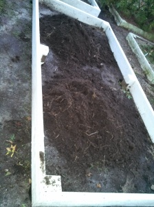 Filling my new raised beds