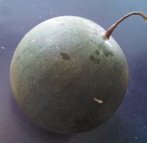 Malali watermelon