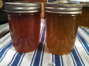 Two pepper jams: mixed color on left, green on right