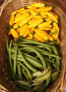 Black Valentine green beans, lemon drop peppers, & peas