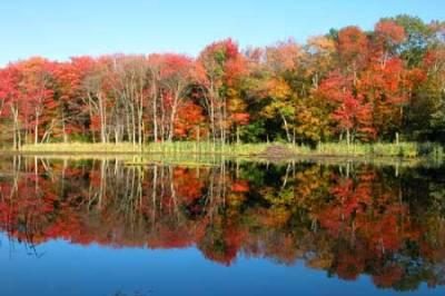 Rhode Island fall foliage (photo credit riroads.com)