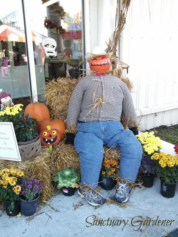 Pumpkin scarecrow SG