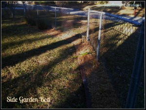 Side garden bed 24Nov13 SG