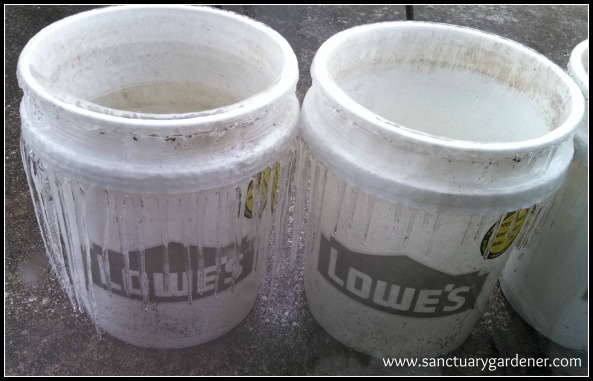 Winter Storm Leon ~ the day after ~ icicles on my buckets