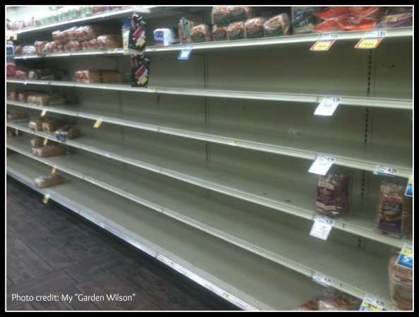 Winter Storm Pax ~ Empty shelves at the local BiLo grocery store