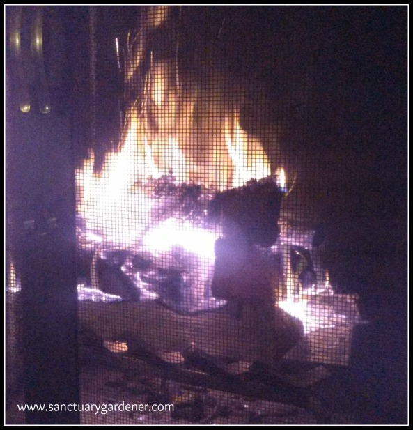 Reverse Fire Building ~ fire is throughout the logs
