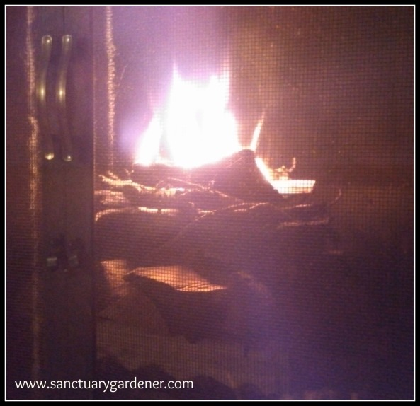 Reverse Fire Building ~ the edges of the newspaper curled towards the fat wood & sit it on fire