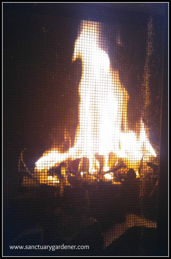 Reverse Fire Building ~ the fat wood is burning hot enough to catch the kindling on fire