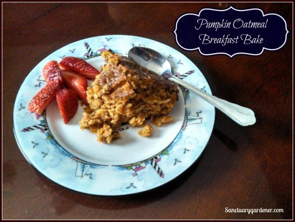 Pumpkin oatmeal bake - slice SG