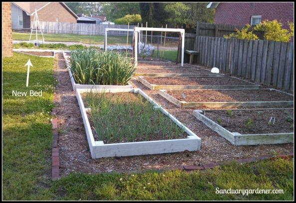 My 18 raised beds in the side yard