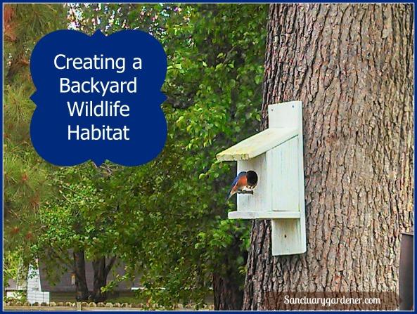Wildlife Habitat Pic