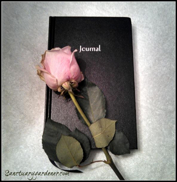 Journal & Rose pic SG