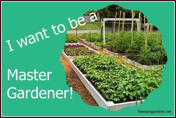 Master Gardener Pic