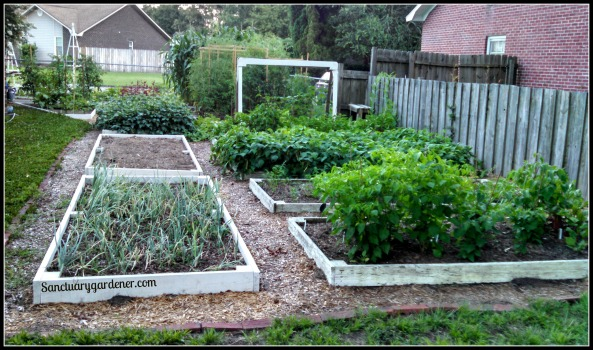 My side beds June 15, 2014