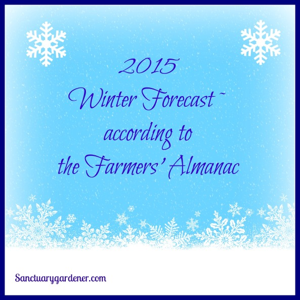 2015 Winter Forecast pic