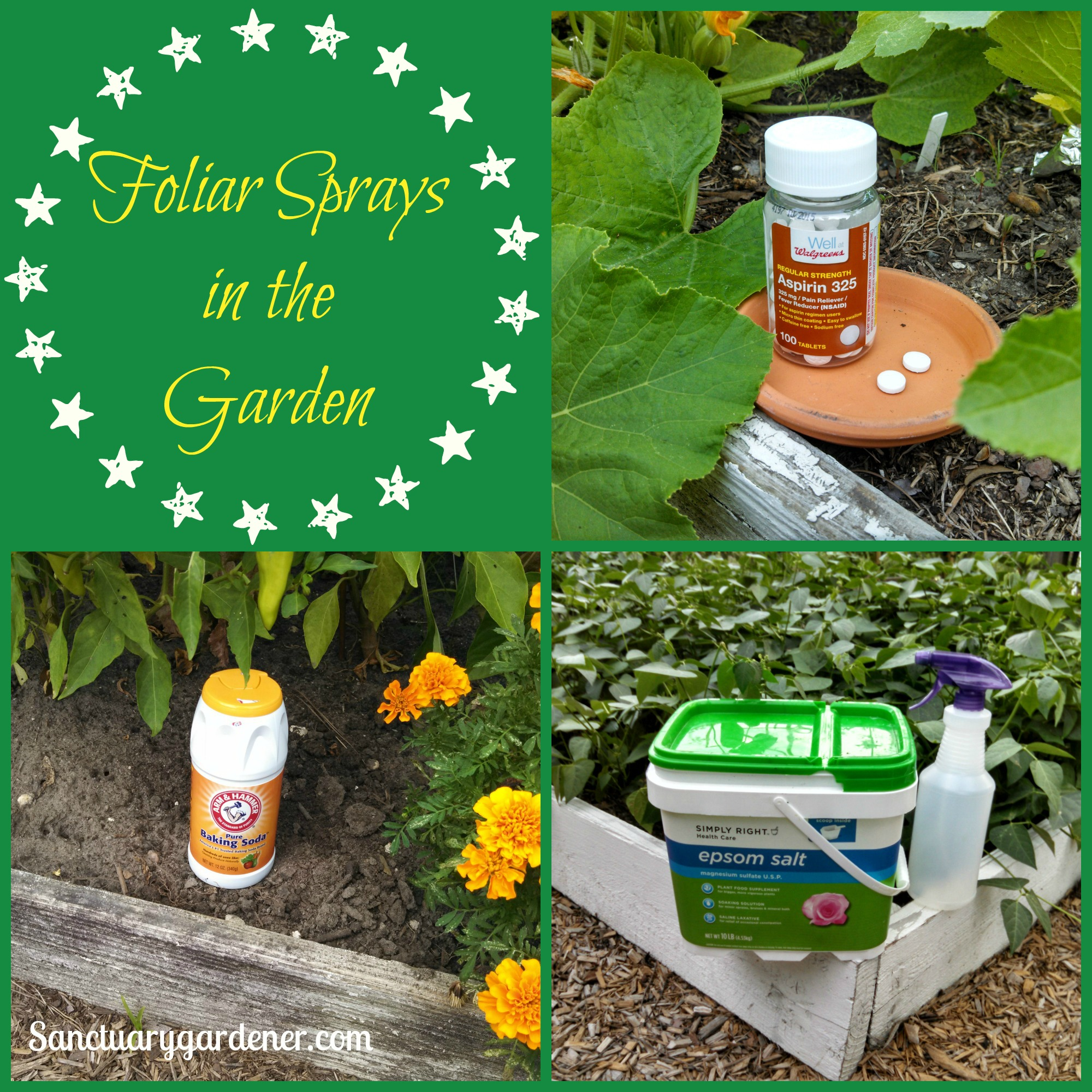 Foliar Sprays for the Garden | Sanctuary Gardener
