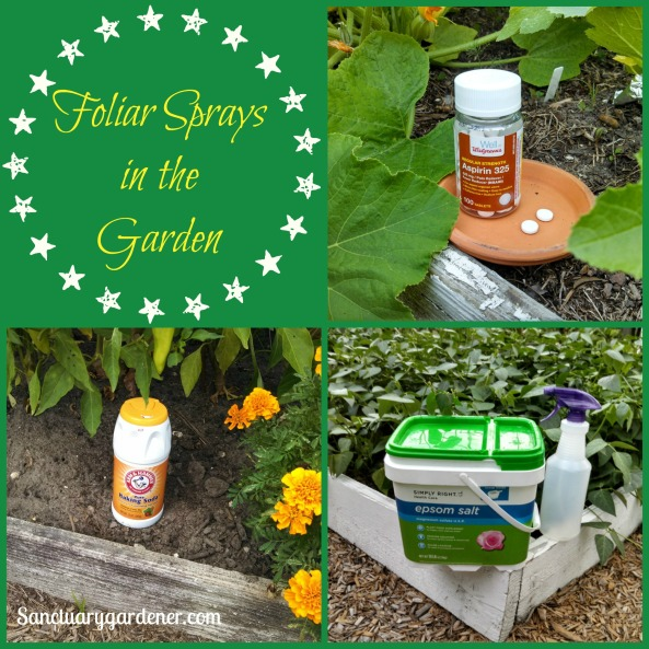 Foliar Sprays for the Garden pic