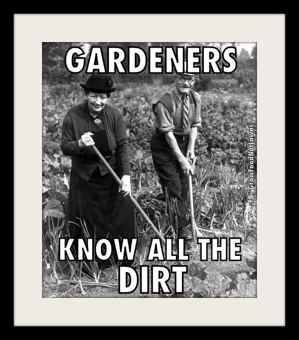 Gardener pic SG