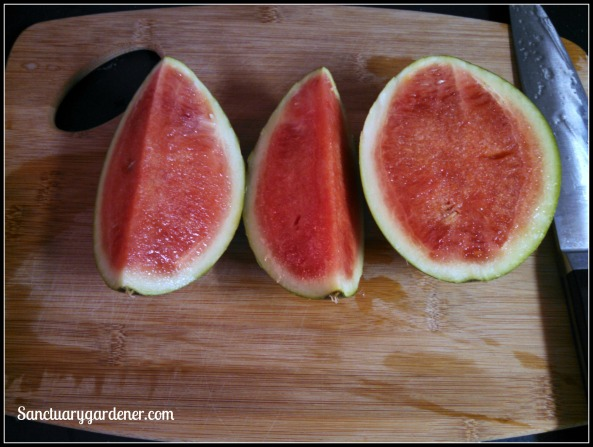 Strawberry watermelon sliced
