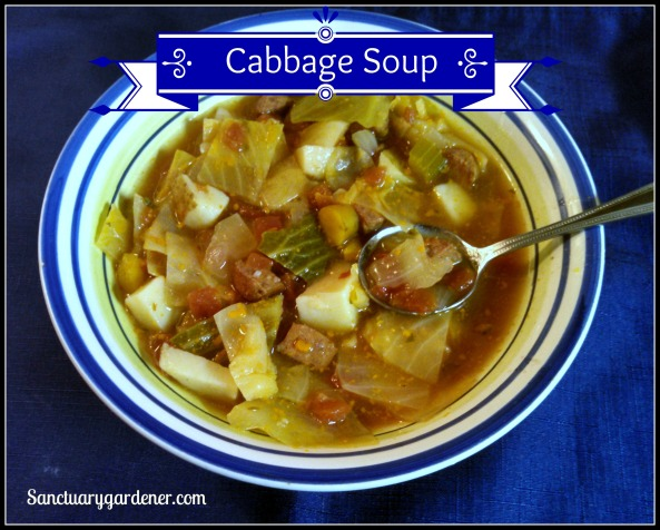 Cabbage Soup pic
