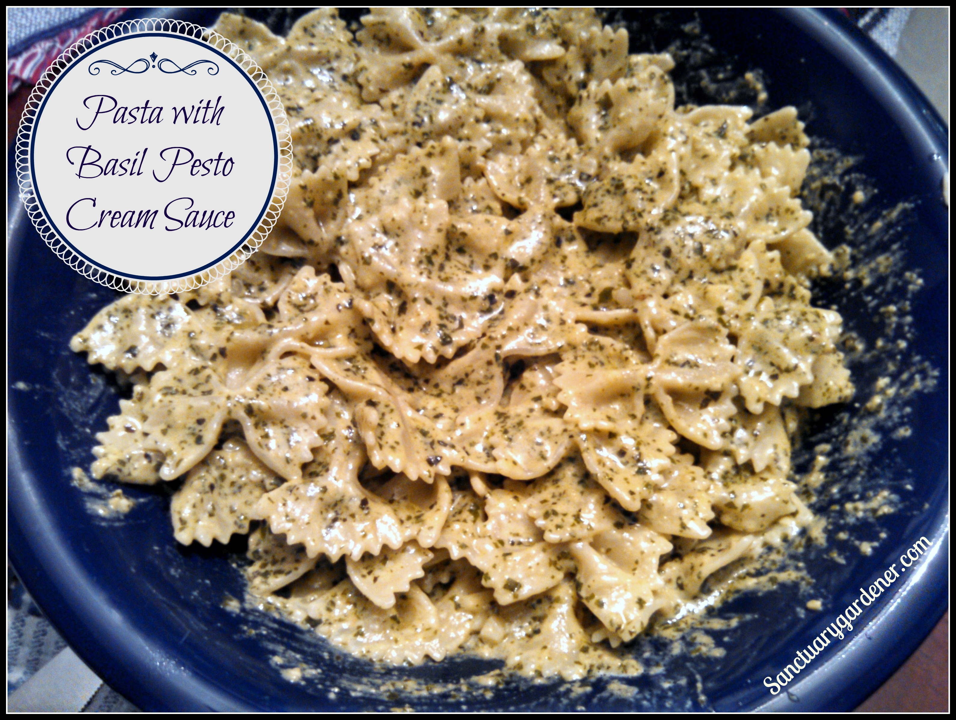 Pasta with Basil Pesto Cream Sauce | Sanctuary Gardener
