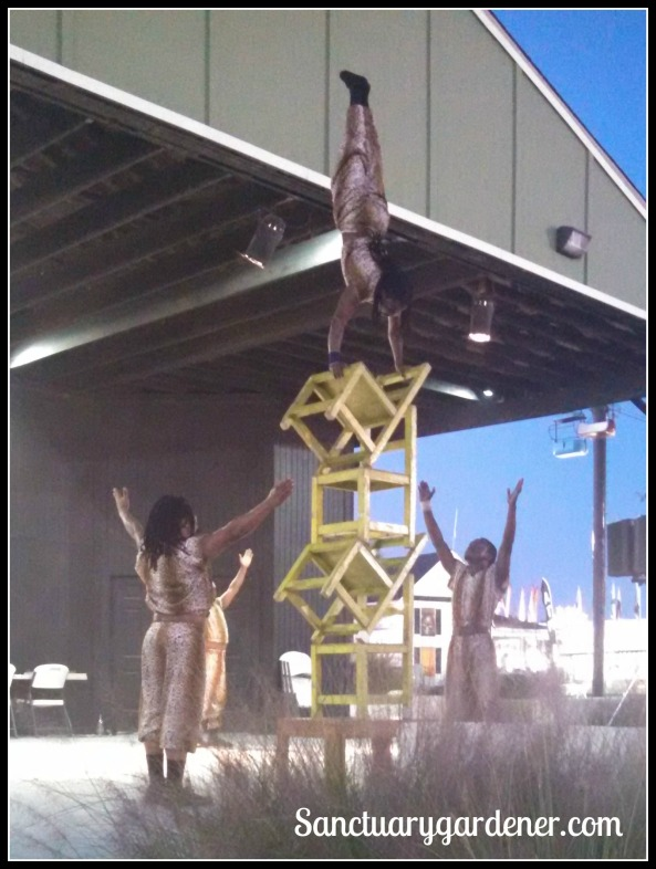 The African Acrobats, performing at the fair