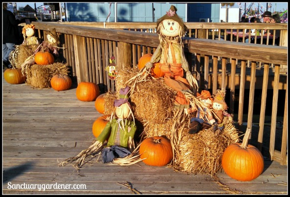 Harvest scarecrows at the fair