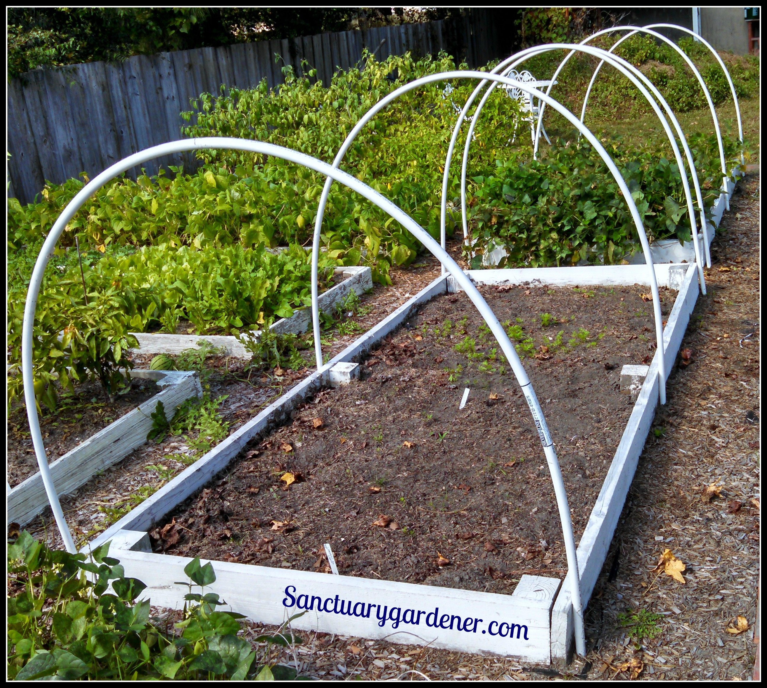 How to Build a Hoop Tunnel Sanctuary Gardener