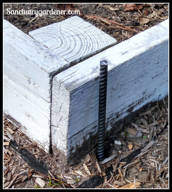 Rebar in the ground outside raised bed