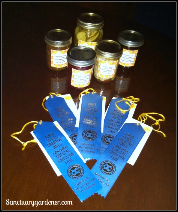 My 2014 Canning ribbons