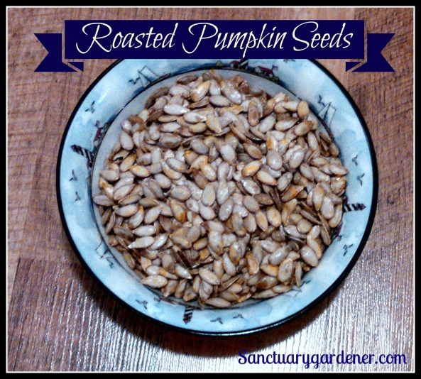 Roasted pumpkin seeds pic