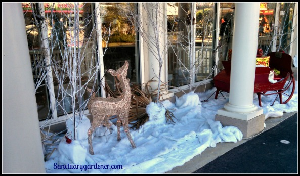 Winter display outside the flower building