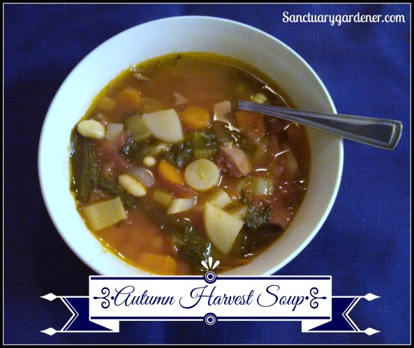 Autumn Harvest Soup SG