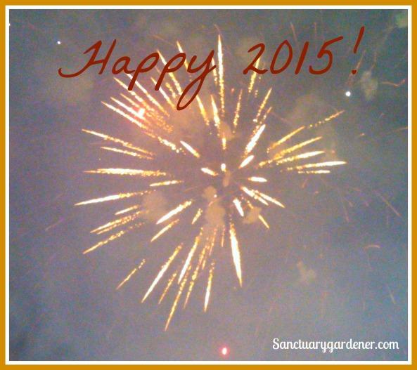 Happy 2015 pic