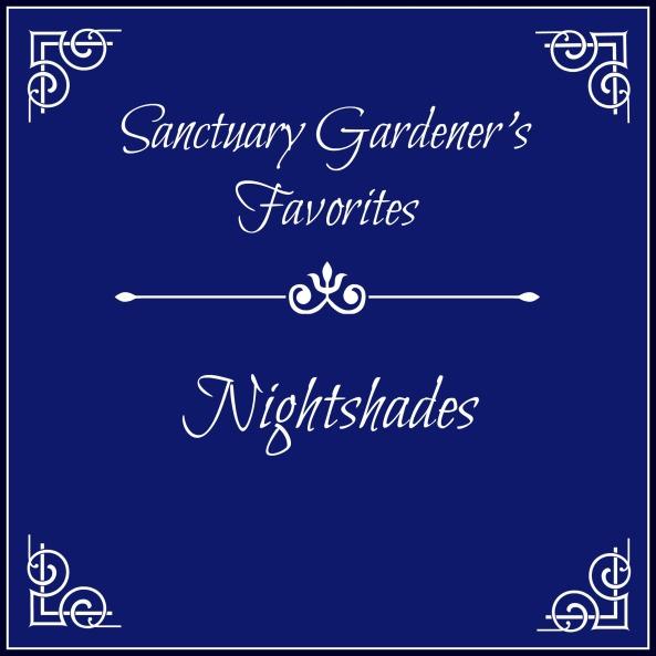 SG Favs - Nightshades